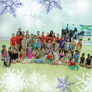 rhythmic gymnastics winter show
